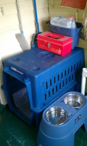 Dog Crate & Food